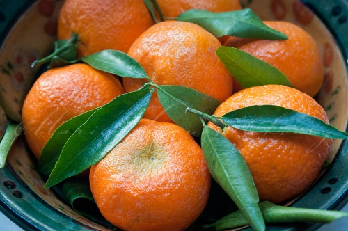 Clementines-8360